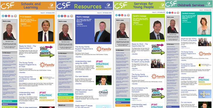 CSF Newsletter- Logo