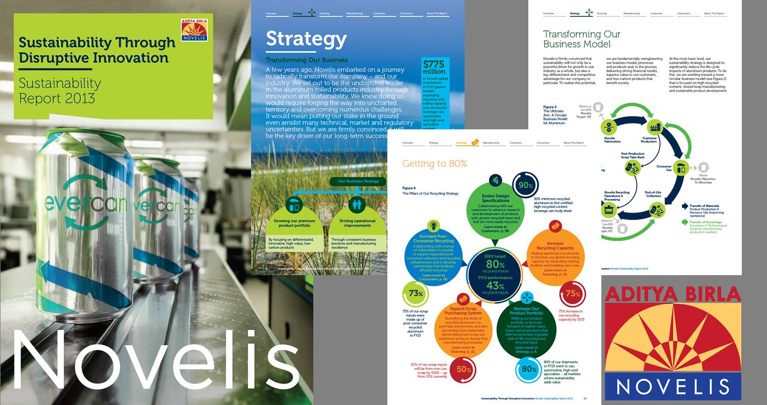 Sustainability Report 2013: Sustainability Through Disruptive Innovation- Logo