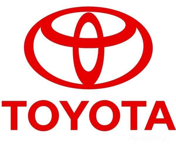 The Toyota Effect- Logo