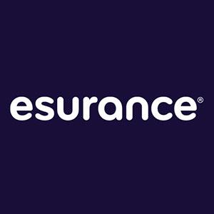Election Insurance- Logo