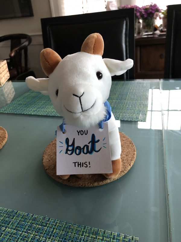 Stuffed goat toy
