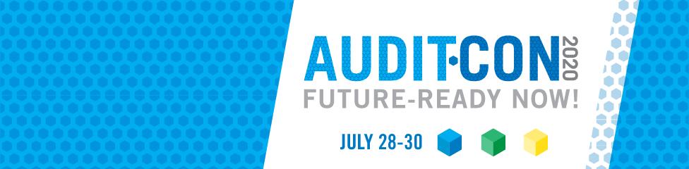 AuditCon 2020